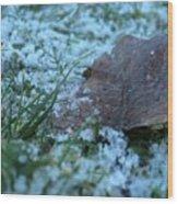 Snowy Leaf Wood Print