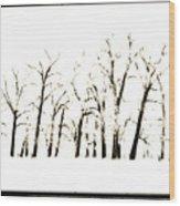 Snowy Line Up Wood Print