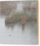 Snowy Marsh With Duck Wood Print
