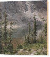 Snowy Mountain Loop 6 Wood Print