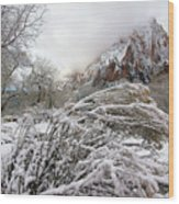 Snowy Mountains In Zion Wood Print