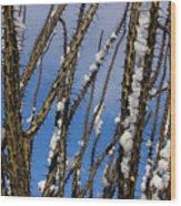 Snowy Ocotillo Sky Wood Print