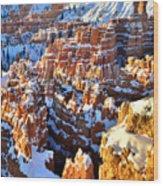 Snowy Overlook Wood Print