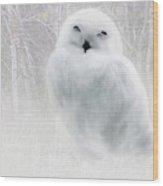 Snowy Owlet Wood Print