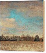Snowy Pasture Wood Print