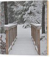 Snowy Path Wood Print