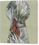 Snowy Pine Keyhole Wood Print