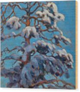 Snowy Pine-tree Wood Print