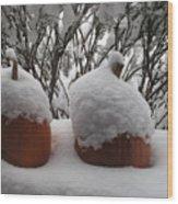 Snowy Pumpkins Wood Print
