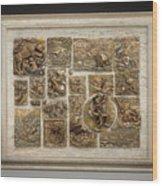 Snowy Range Life - Large Relief Panel Wood Print