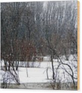 Snowy River Wood Print