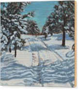 Snowy Road Home Wood Print