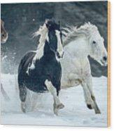 Snowy Run Wood Print