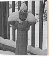 Snowy Statue Wood Print