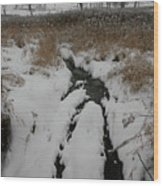 Snowy Stream Wood Print