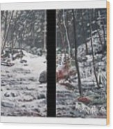 Snowy Stream Wood Print