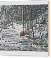 Snowy Stream2 Wood Print