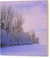 Snowy Sunday Wood Print