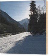 Snowy Track Wood Print