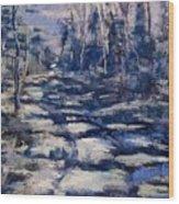 Snowy Trail Wood Print