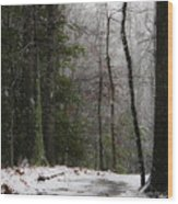 Snowy Trail Quantico National Cemetery Wood Print