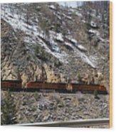 Snowy Train Wood Print