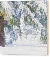 Snowy Trees In Winter Landscape  Wood Print