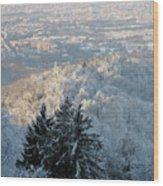 Snowy Turin Wood Print