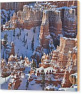 Snowy Turrets Wood Print