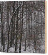 Snowy Woods Wood Print