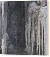 So Cold  Wood Print