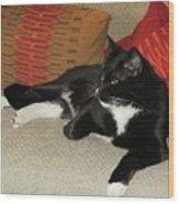Socks The Cat King Wood Print