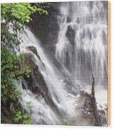 Soco Falls 2 Wood Print