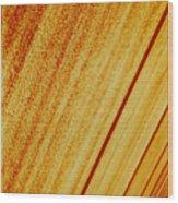Sod Wood Print