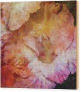 Soft As A Peach 3032 Idp_2 Wood Print