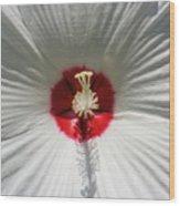 Soft Cotton Sheets Wood Print