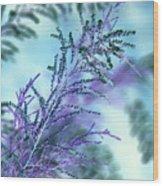 Soft Grasses Wood Print