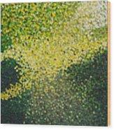 Soft Green Light  Wood Print