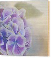 Soft Hydrangeas On Peach Wood Print