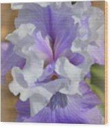 Soft Iris Wood Print