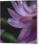 Soft Macro Of Purple Flower Wood Print