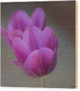 Soft Pastel Purple Tulips  Wood Print