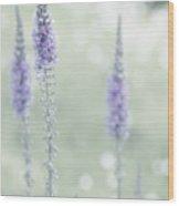 Soft Pastels Wood Print