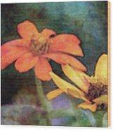 Soft Petals 3058 Idp_2 Wood Print