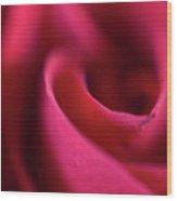 Soft Petals Wood Print