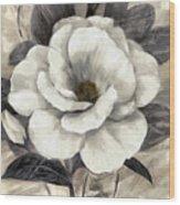 Soft Petals I Wood Print