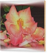 Soft Pink Rose Wood Print