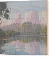 Soft Reflections Wood Print