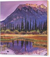 Soft Shades Of Reflections Wood Print