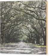 Soft Southern Day Wood Print